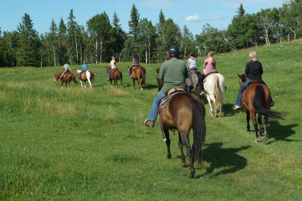 Red Lodge Working Ranch Vacation rider on ridge