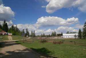 Red Lodge Guest Ranch