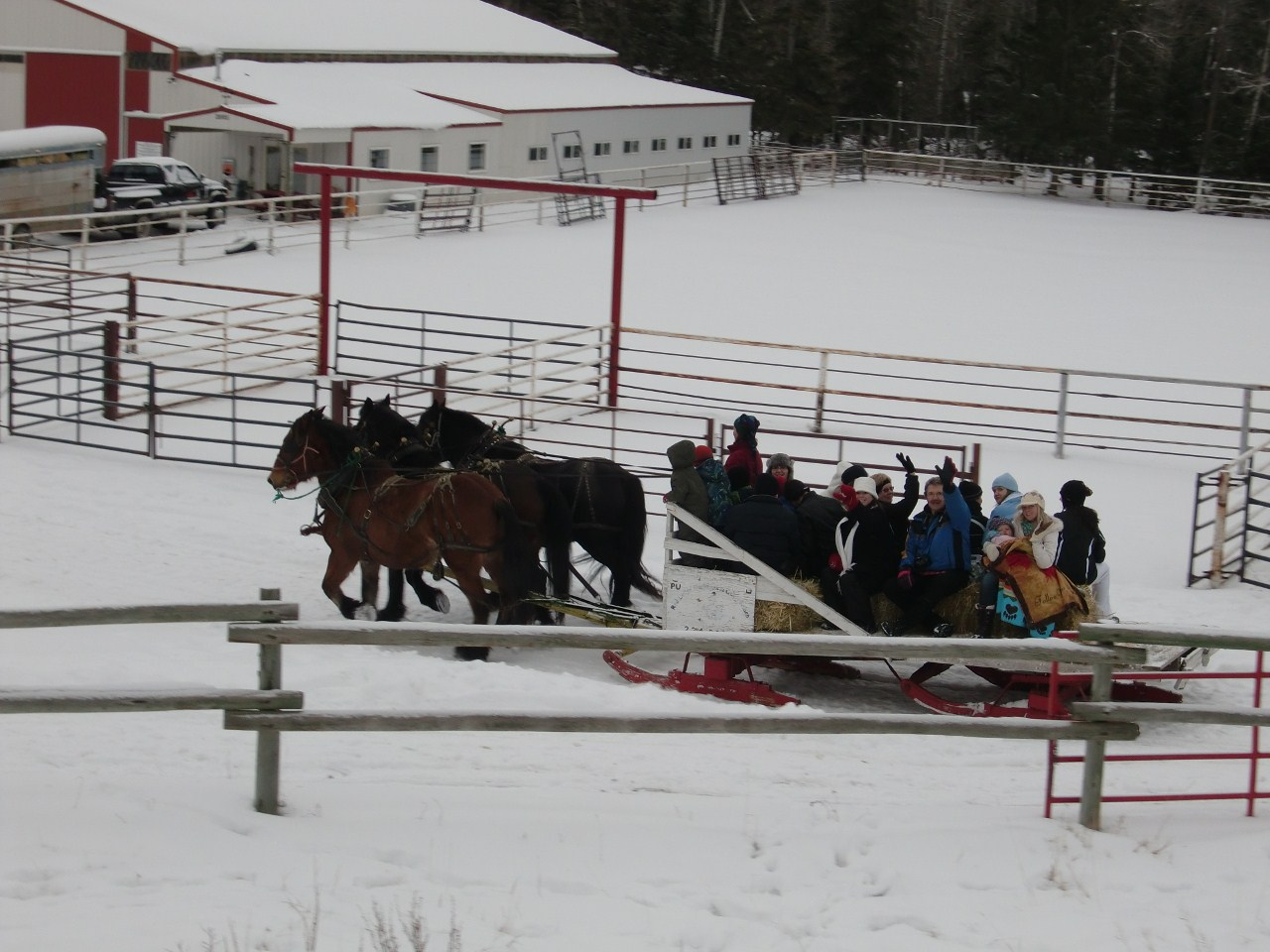 Sleigh Ride Fun